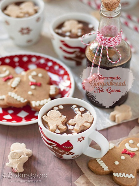 Homemade-Gingerbread-Hot-Cocoa-by-Bakingdom