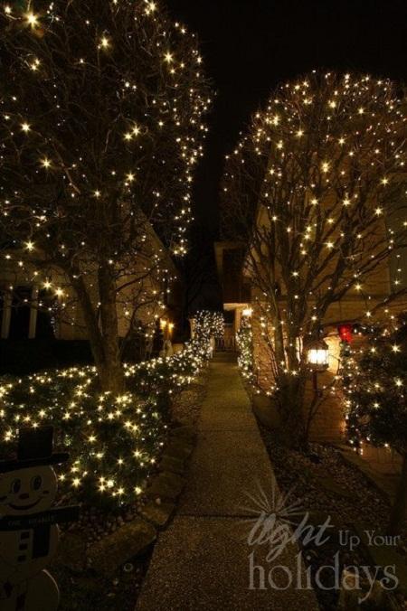 coutyard-lights