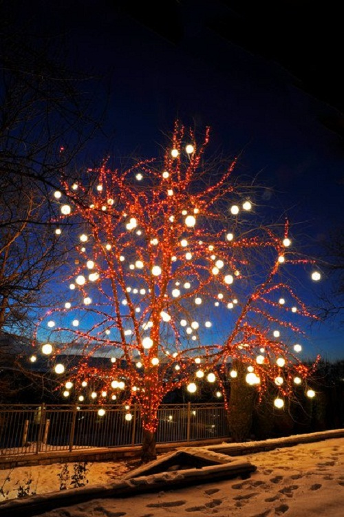 gorgeous-tree-lights