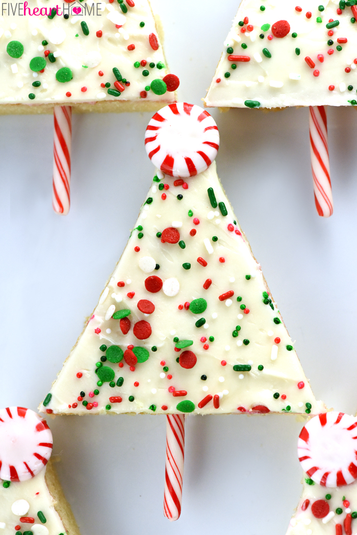 christmas-cake-recipes-13