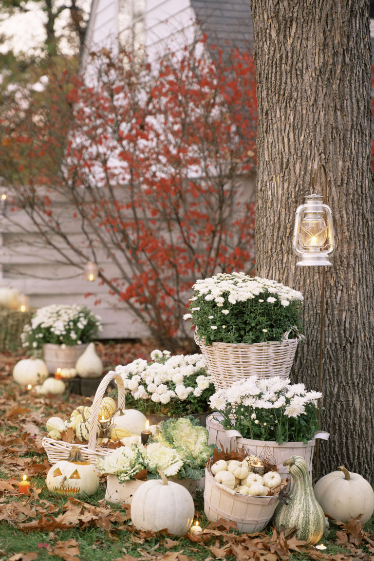 Exquisite Outdoor Halloween Decoration Ideas - Festival ... on Lawn Decorating Ideas id=88461